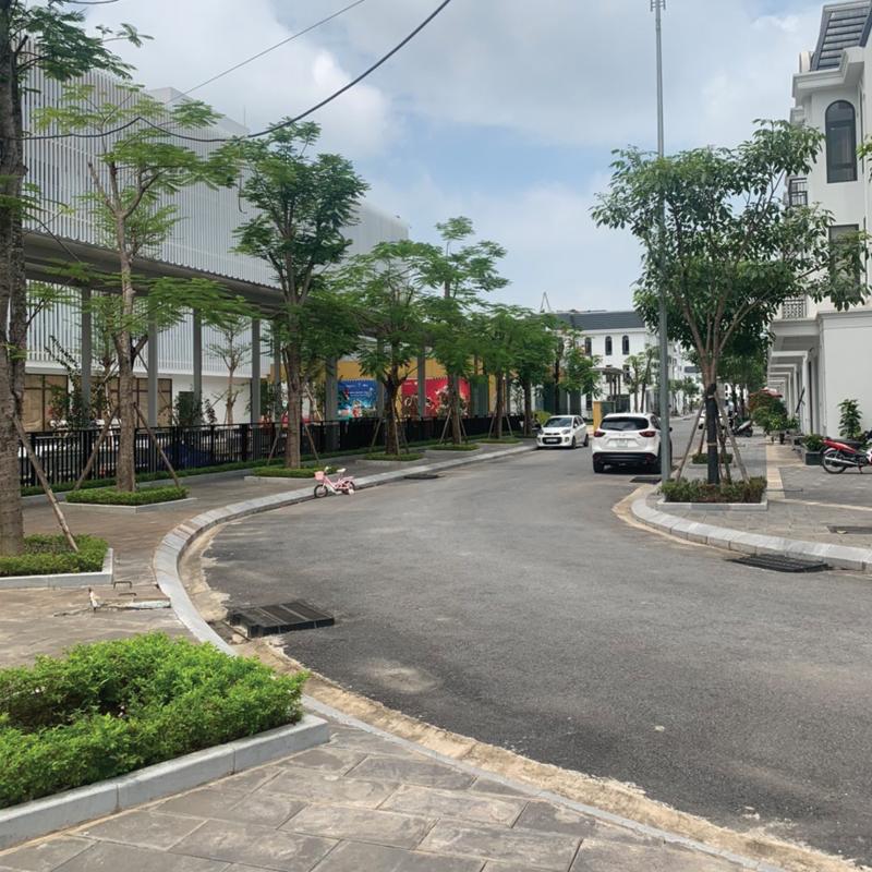 mặt bằng đường nhựa đường nội đô Crown Villas Thái Nguyên